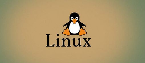 DFN30053 OPEN SOURCE OPERATING SYSTEM